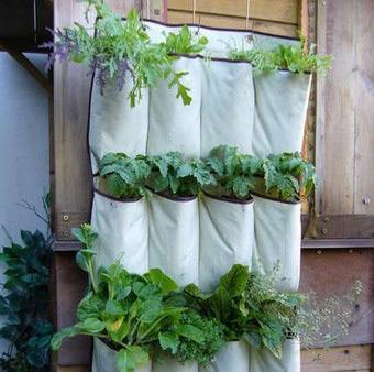 jardin-vertical1