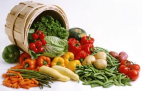 Tendencia de vegetarianos en comer sal