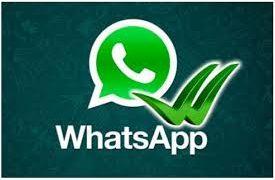 Nuevas actualizaciones de la Apps más usada de Mensajería: WhatsApp