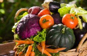 La comida orgánica es una tendencia que crece en el mundo