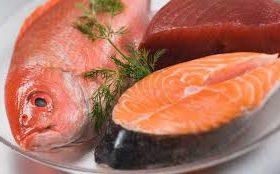 En Argentina se consume poco pescado a pesar de la inmensa costa