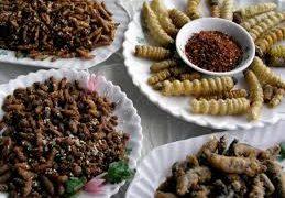 Los insectos en la gastronomía, una tendencia que crece