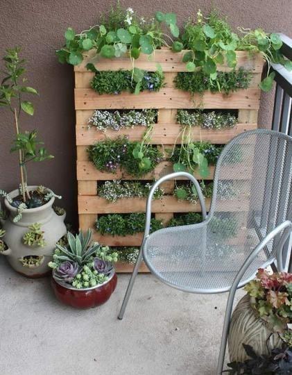 jardin verticalimagen-122