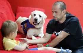 Terapia con animales para tratar el autismo