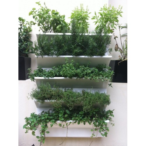 jardinhuerta-vertical-500x500